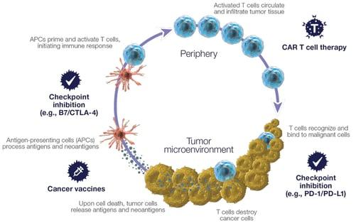 Immuno-Oncology-diagram