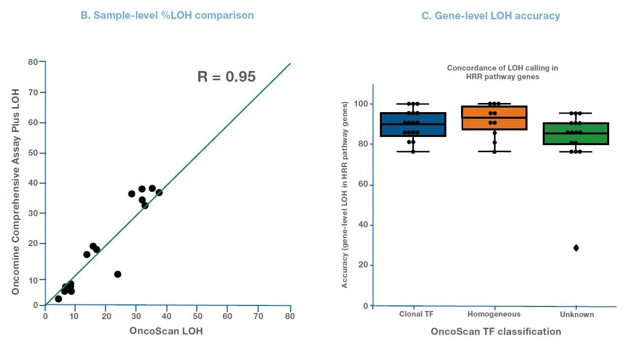 loh-assessment-chart